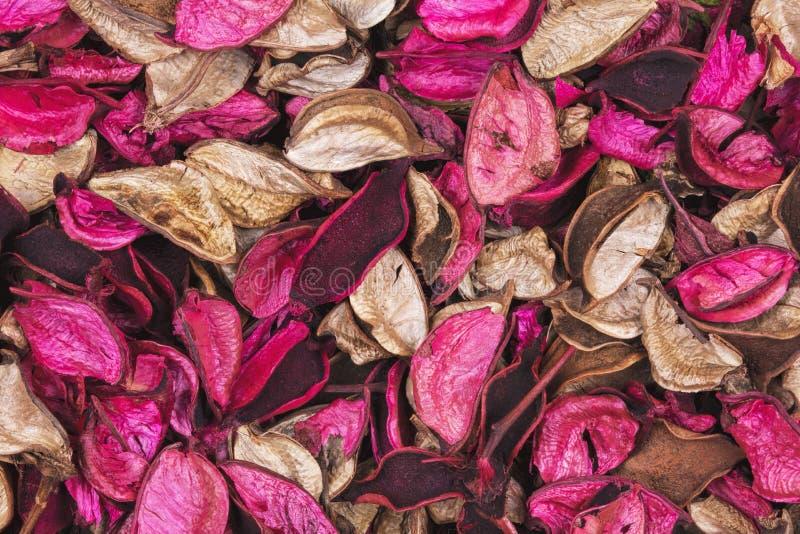 Achtergrond van mooie en kleurrijke Rose Scent potpourri royalty-vrije stock fotografie