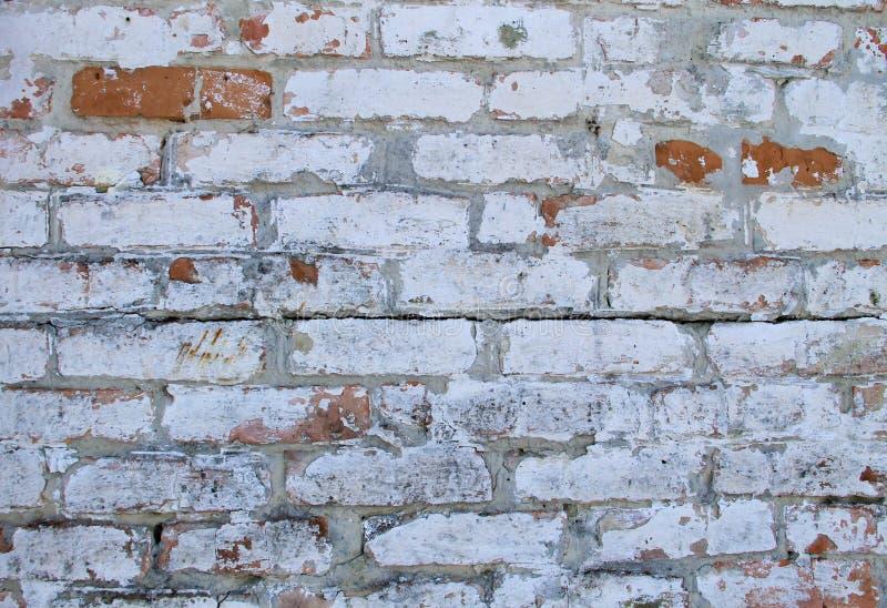 Achtergrond van oude uitstekende vuile bakstenen muur met schilpleister royalty-vrije stock fotografie