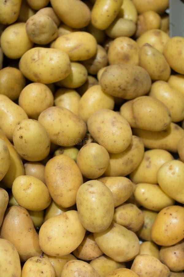 Achtergrond van Ruwe Aardappel voor Frieten stock fotografie