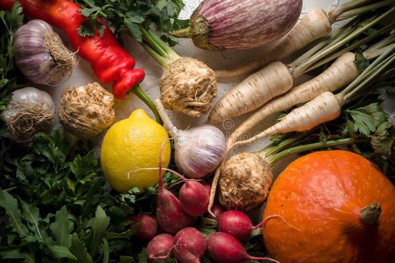 Achtergrond van selderiewortels, peterselie, radijzen met bladeren en knoflook, pompoenen en Spaanse peper royalty-vrije stock afbeeldingen