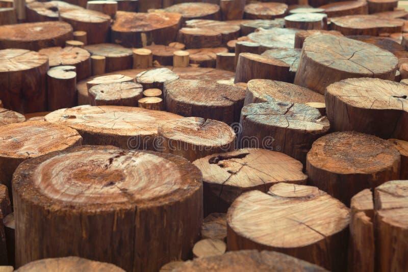Achtergrond van teak de houten stompen met smalle nadruk stock fotografie