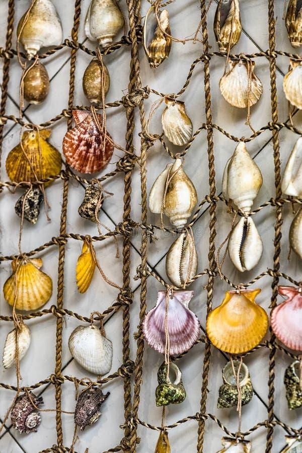 Achtergrond van verbindende overzeese shells stock foto