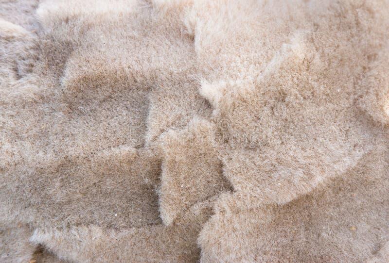Achtergrond van vezel op geschoren alpacarug stock foto