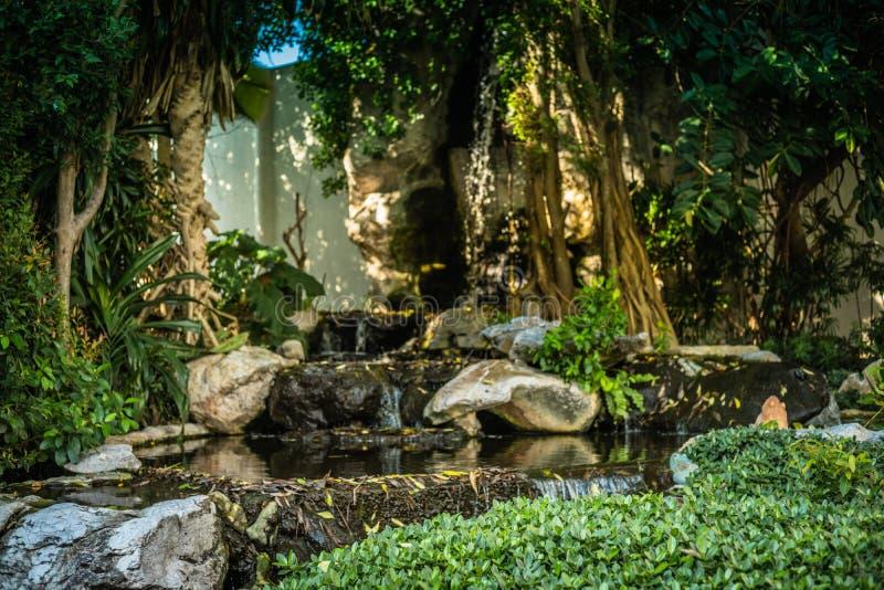 Achtergrondafbeelding van tropische wildernis, bomen en waterval op een zonnige dag stock foto
