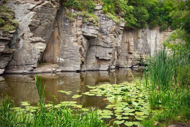 Achtergrondrots en rivier in ravijn of canion De stromen van de bergrivier in canion op achtergrond van rotsravijn Mooie machtige royalty-vrije stock foto