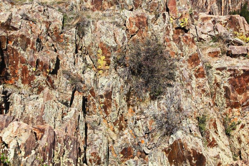 Achtergrondtextuur van Zwarte Canion van Gunnison bij Preekstoelrots stock foto's