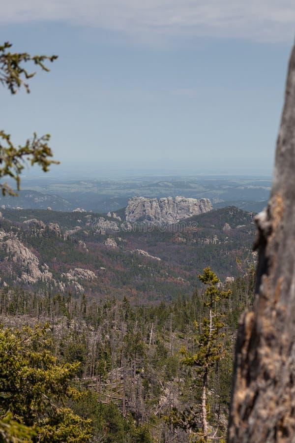 Achterkant van het Landschap van Onderstelrushmore royalty-vrije stock afbeeldingen