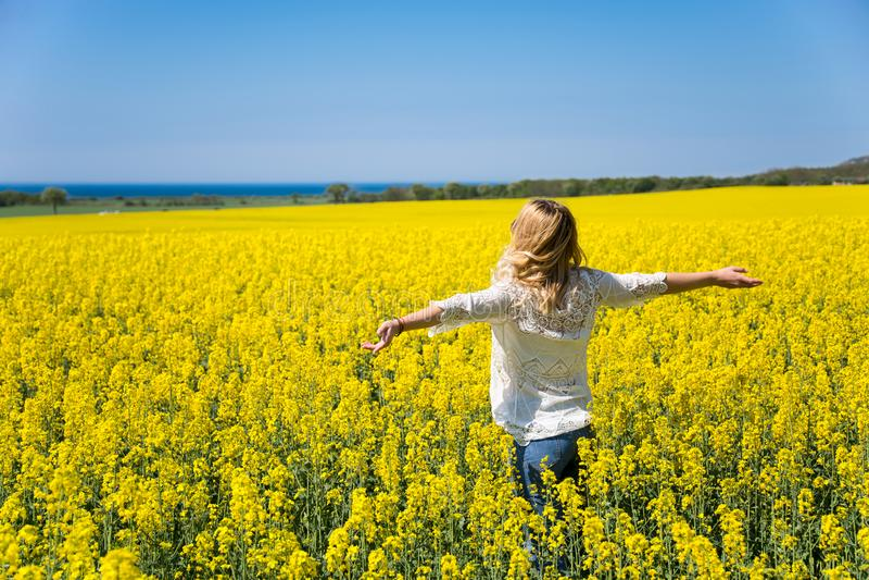 Achtermening die van vrouw zich op het gele gebied onder blauwe hemel bevinden Perfecte achtergrond royalty-vrije stock afbeelding