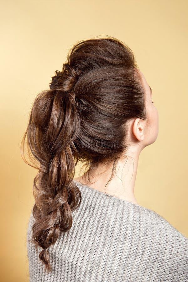 Achtermening van de vrouwelijke vlecht van het kapselvolume met bruin haar stock afbeelding