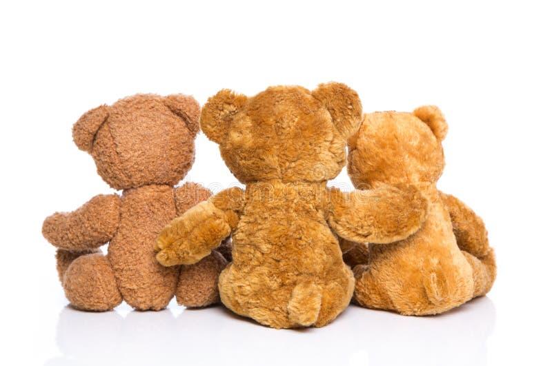 Achtermening van drie geïsoleerde teddyberen - concept voor familie. stock foto