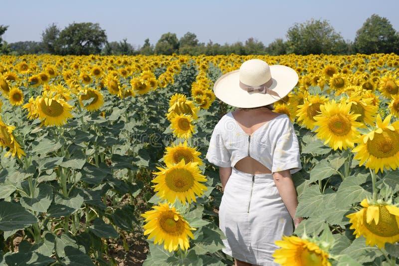 Achtermening van een vrouw die op een gebied van zonnebloemen lopen die een hoed dragen royalty-vrije stock afbeeldingen