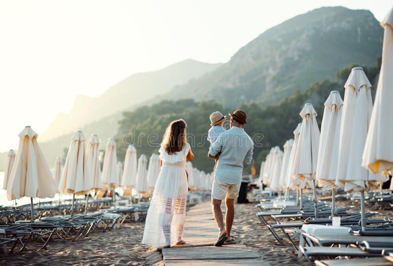 Achtermening van familie met twee peuterkinderen die op strand op de zomervakantie lopen stock afbeeldingen