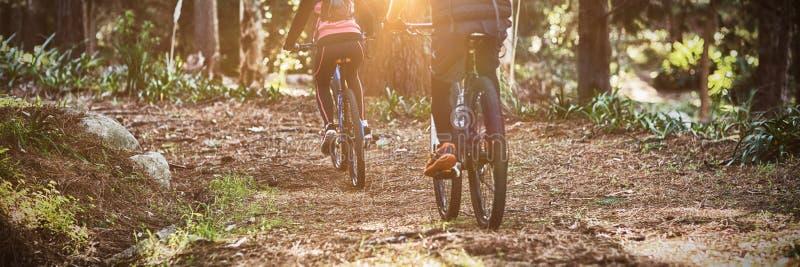 Achtermening van fietserpaar het cirkelen in platteland royalty-vrije stock afbeeldingen