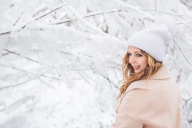 Achtermening van jonge mooie vrouw in een de winterbos stock foto