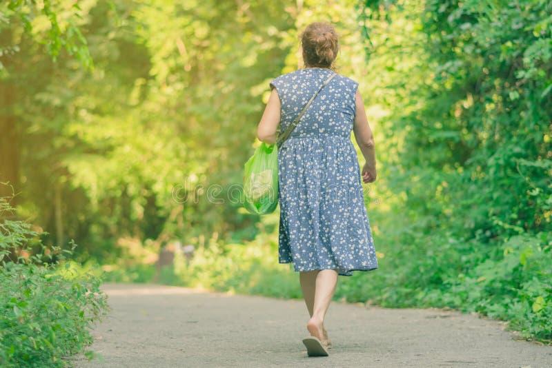 Achtermening van mensen die op de wandelingssleep in het hout lopen aan royalty-vrije stock fotografie