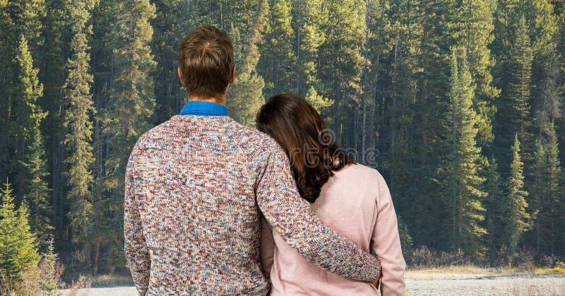 Achtermening van paar die bos bekijken stock foto