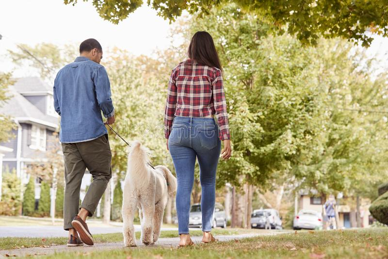 Achtermening van Paar het Lopen Hond langs Straat In de voorsteden stock fotografie