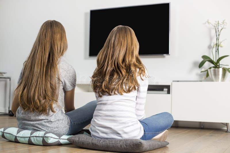 Achtermening van siblings die op TV thuis letten royalty-vrije stock fotografie
