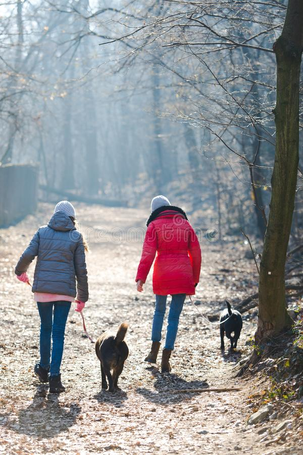 Achtermening van twee tienermeisjes die met honden lopen - Koude ochtend t stock foto's