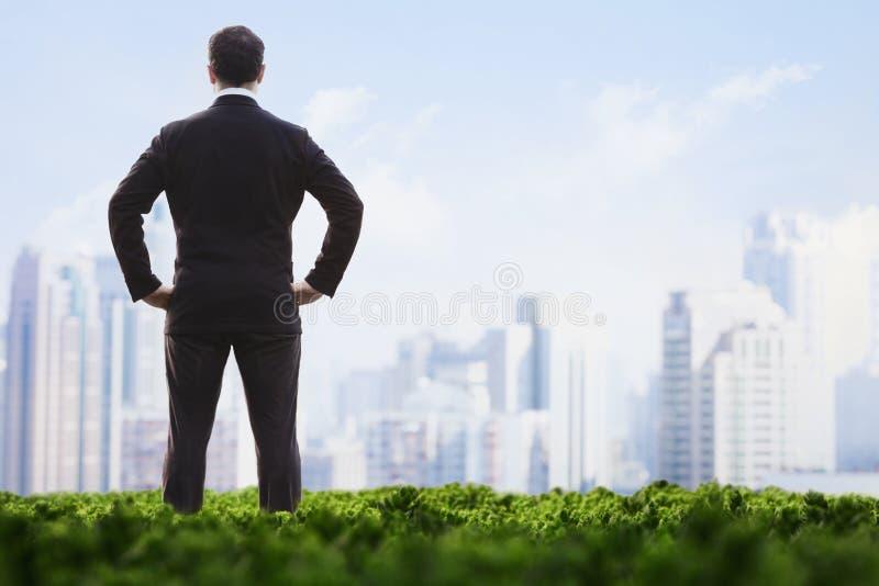 Achtermening van zakenman met handen op heupen die zich op een groen gebied bevinden en de stadshorizon bekijken stock afbeeldingen