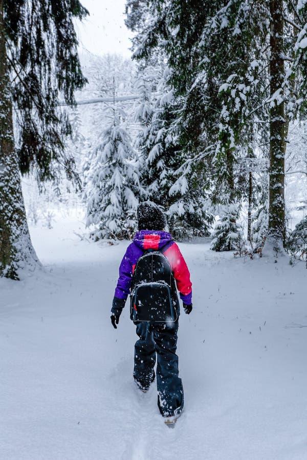 Achtermeningsmeisje onder de sneeuw in bos royalty-vrije stock foto's