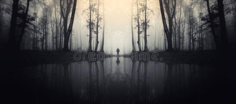 Achtervolgd meer in bos met mensensilhouet royalty-vrije stock foto