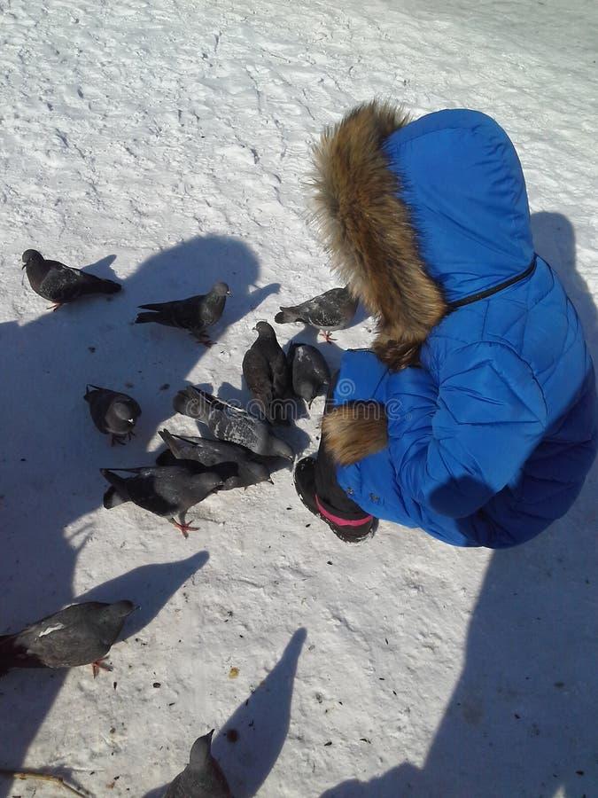 Achtjähriges Kind in einem Matrosen im Winter, zum einzuziehen stockfotografie