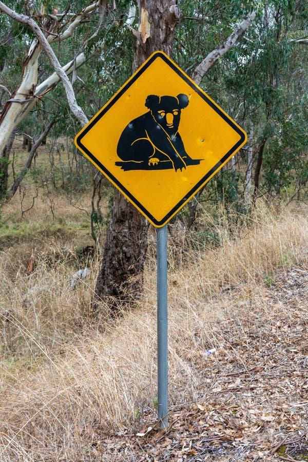 Achtung: Koalas Road Sign lizenzfreie stockfotos