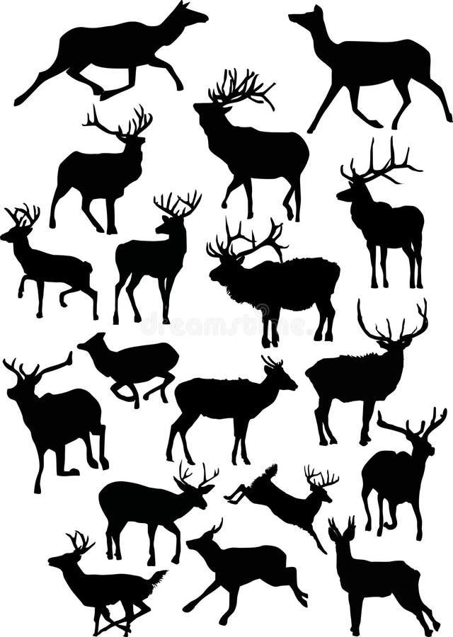 Achtzehn Rotwildschattenbilder stock abbildung