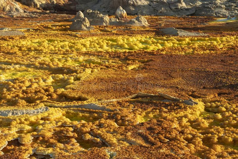 Acid concretions in Dallol site in the Danakil Depression in Ethiopia, Africa. Acid concretions in Dallol site in the Danakil Depression in Ethiopia in Africa stock photography