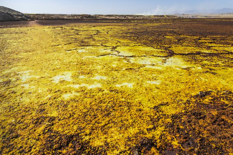 Acid and salty concretions in Dallol site in the Danakil Depression in Ethiopia, Africa. Acid and salty concretions in Dallol site in the Danakil Depression in stock photography