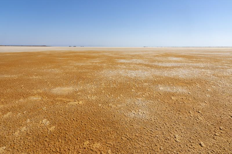 Acid and salty concretions in Dallol site in the Danakil Depression in Ethiopia, Africa. Acid and salty concretions in Dallol site in the Danakil Depression in royalty free stock photography