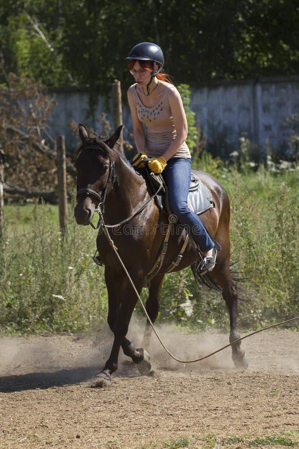 Acidente com cavalo, queda de lições de equitação do riderHorseback fotografia de stock