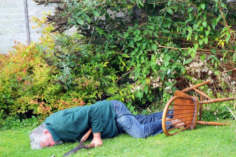 Acidente, queda do jardim sobre Perigo homem inconsciente imagem de stock royalty free