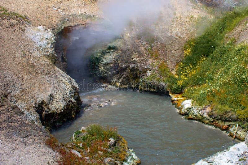 Acidic borowinowy basen w Borowinowym wulkanie w Yellowstone parku narodowym obraz royalty free