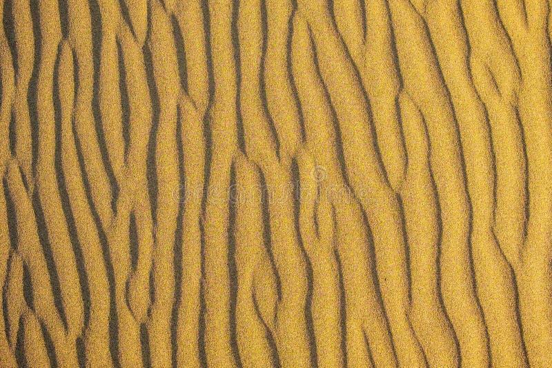Acima da ideia da textura dourada, amarela e alaranjada da areia do deserto com as sombras que fazem ondas como formas imagem de stock royalty free