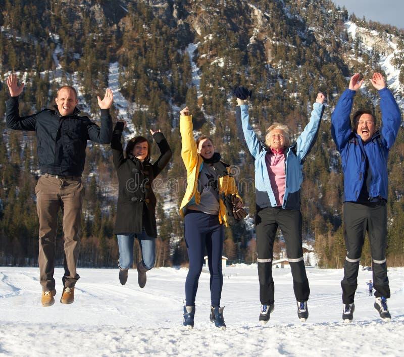 Acima no ar do inverno imagens de stock royalty free
