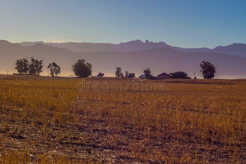 Ackerland im Glühen des frühen Morgens gegen Berge lizenzfreie stockfotos
