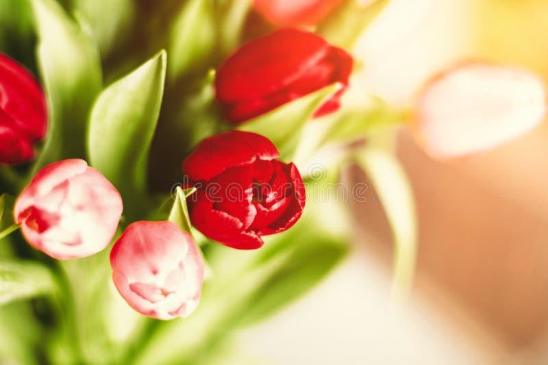Aclare encima de su día con las flores fotos de archivo