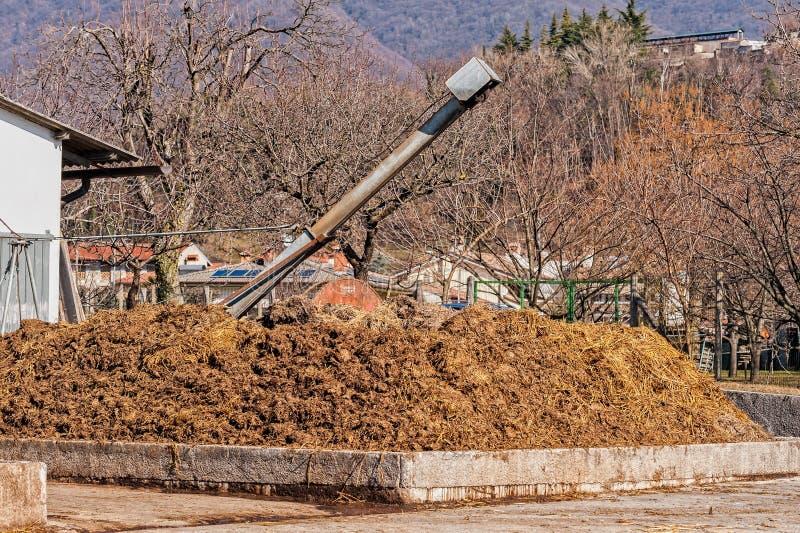Acobarde o estrume que será usado para fertilizar fotografia de stock