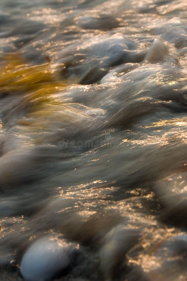 Acometida de la marea del Seashell fotografía de archivo libre de regalías
