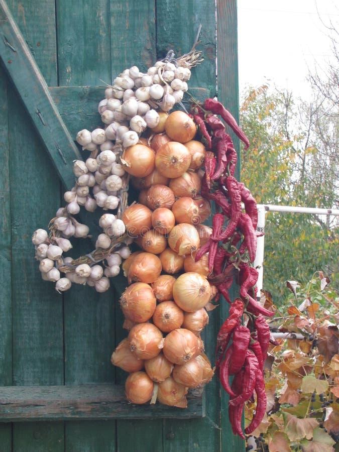 Acoplamiento de la cebolla, del ajo y de la pimienta roja foto de archivo libre de regalías