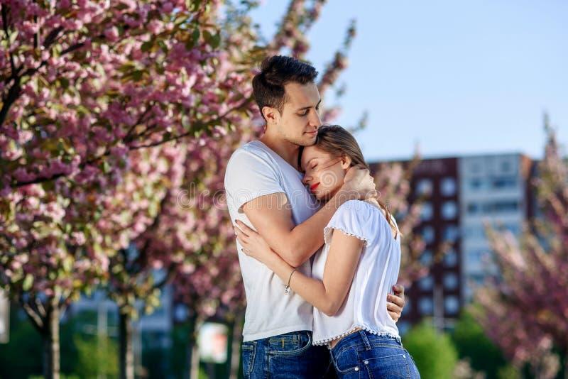 Acople abraços perto das árvores de sakura no jardim de florescência Os pares no amor passam o tempo no jardim da mola, flores no imagens de stock royalty free