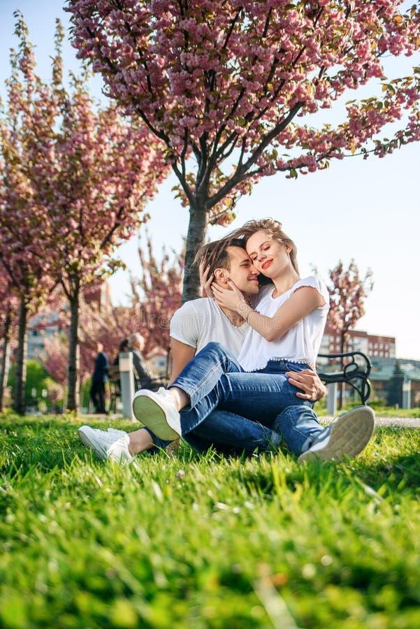 Acople abraços perto das árvores de sakura no jardim de florescência Os pares no amor passam o tempo no jardim da mola, flores no foto de stock