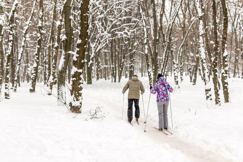 Acople dos povos que apreciam o esqui corta-mato no parque ou na floresta da cidade no inverno Atividades exteriores do esporte d imagens de stock royalty free
