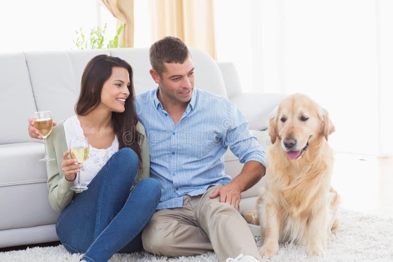 Acople guardar vidros de vinho ao olhar o cão fotografia de stock royalty free