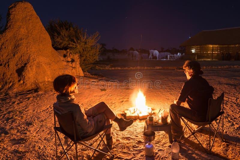 Acople o assento em fogo ardente do acampamento na noite Acampamento no deserto com os elefantes selvagens no fundo Aventuras do  foto de stock