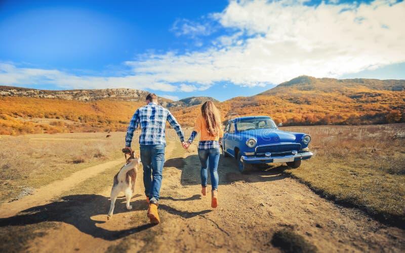 Acople o prado do campo do por do sol do outono do cão do perdigueiro da caminhada que guarda as mãos foto de stock royalty free