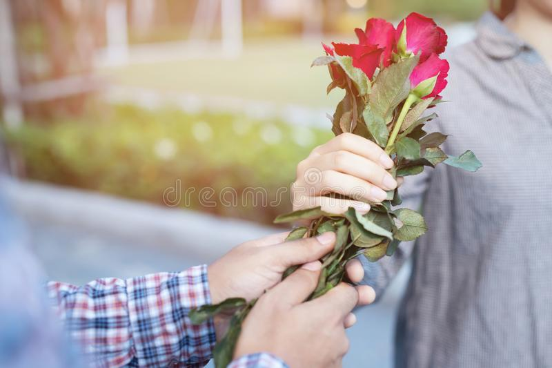 Acople a posição do homem novo dos amantes com uma surpresa vermelha da rosa disponível dada à amiga imagem de stock