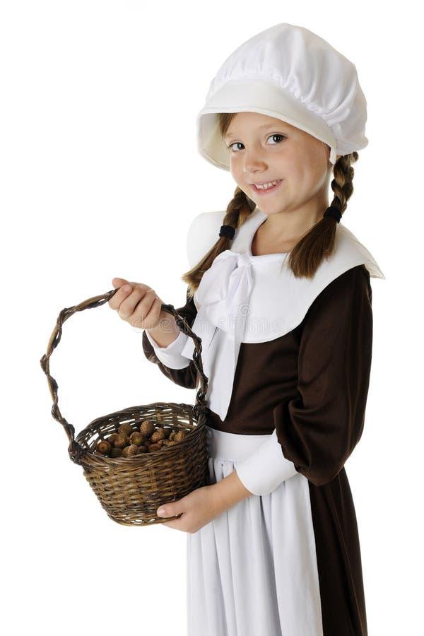 Acorn Collecting Pilgrim royalty free stock photos